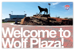 Welcome to Wolf Plaza!