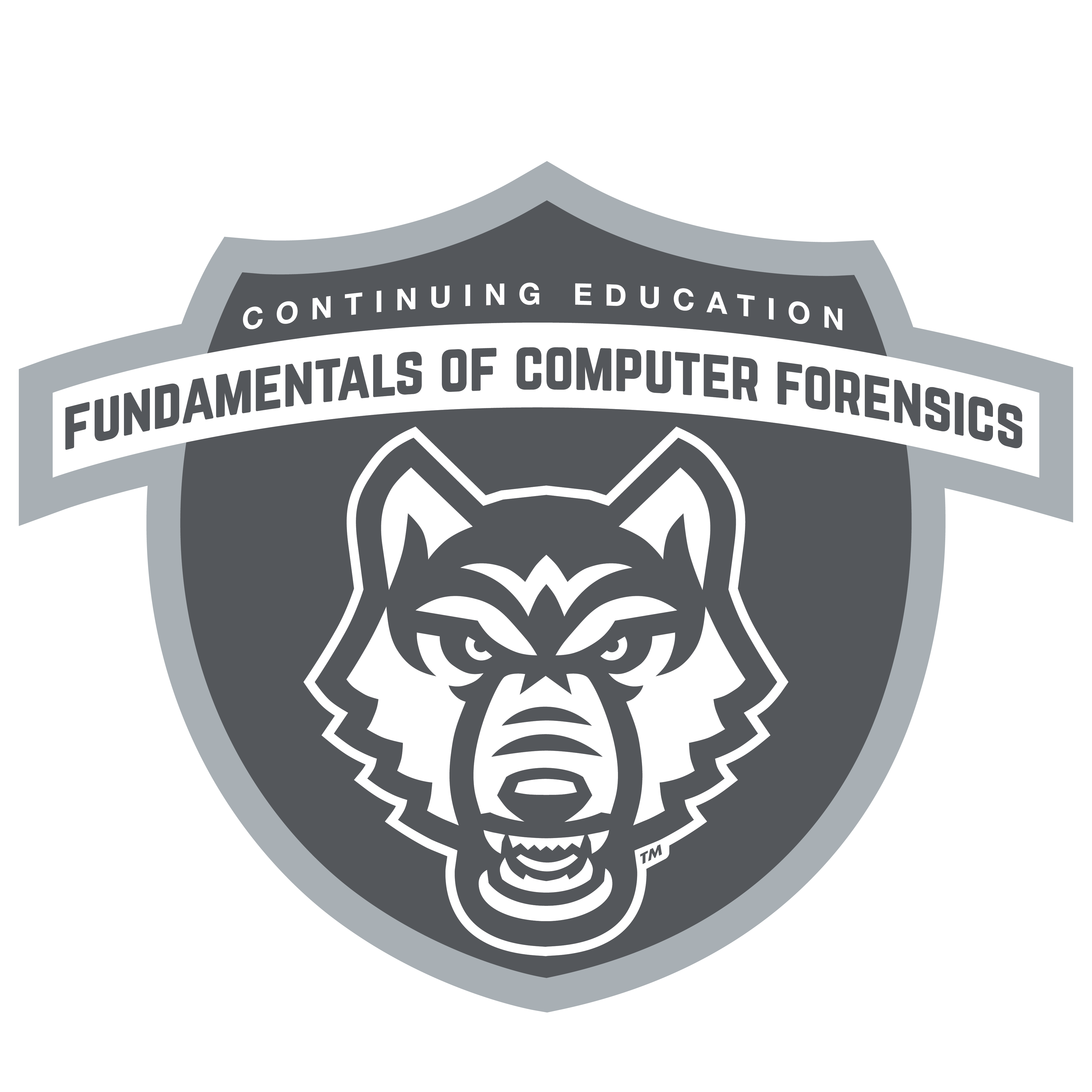 Computer Forensics Badge