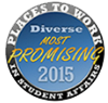 2015 Most promising places to work seal