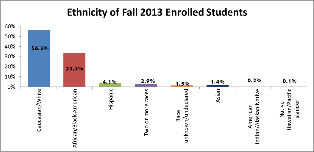Ethnicity of Fall 2013 Enrolled Students