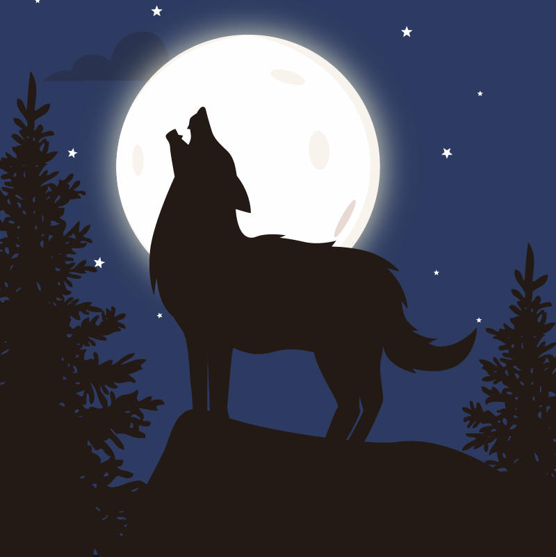 Wolf Howling at the moon in the forest.