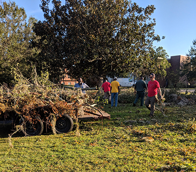 UWG students assisting outdoors with hurricane cleanup in a wooded area