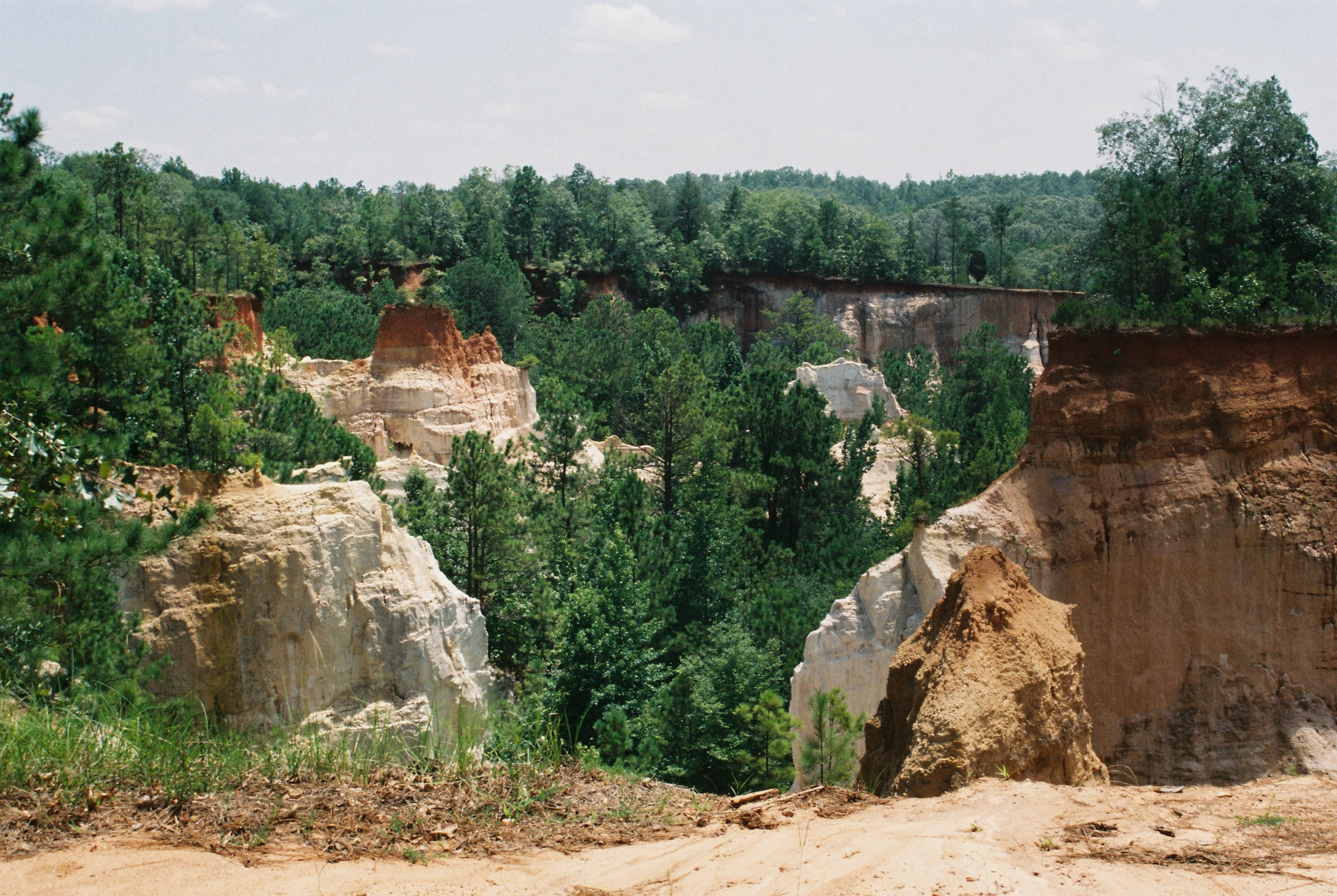 Providence Canyon in Georgia, which was formed by geological changes in the area