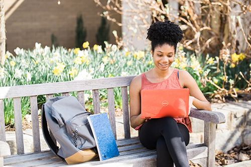A student studying outside on a laptop