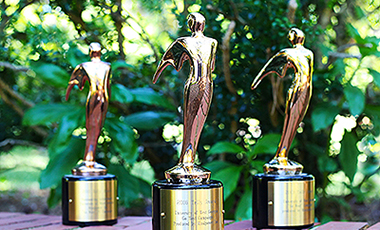 "The University of West Georgia's Office of University Communications and Marketing was recently awarded its third national Telly award. This year, UWG was awarded a bronze Telly in the Local TV Campaign Not-for-Profit category for the ""Go West"" television campaign."